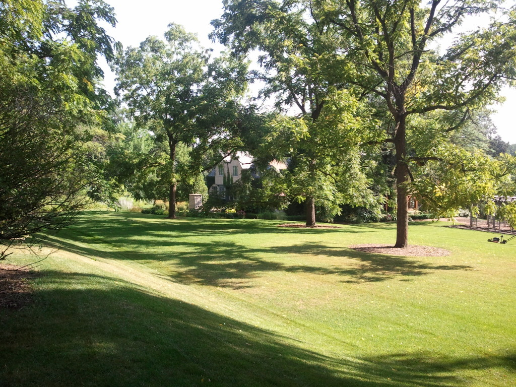 Lawn Care Milwaukee Landscaping Mequon Landscaping
