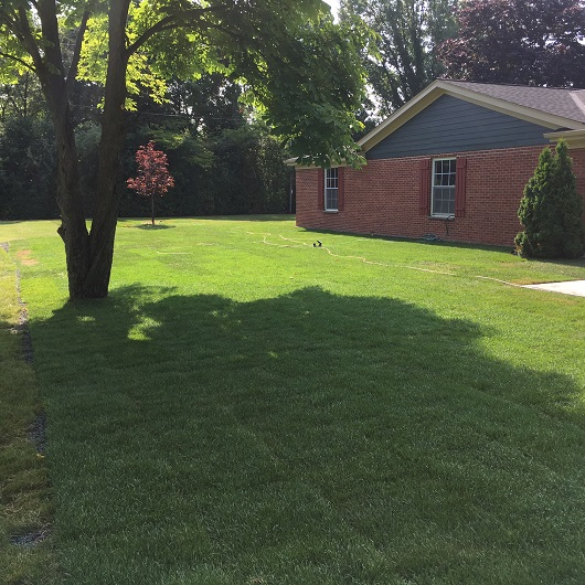 Milwaukee And Shorewood Landscaping Schedule Your